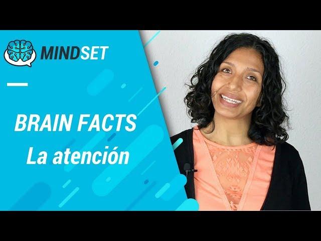 La Atención: subprocesos, cerebro y desarrollo
